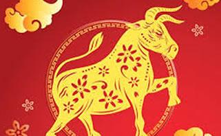 Anand Krishna: Tahun Kerbau Logam